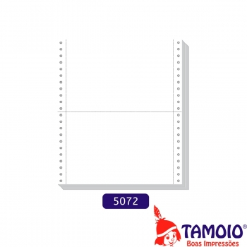 FORMULARIO CONT 80COL RAZAO BC 1V 6000F 5072 TAMOI